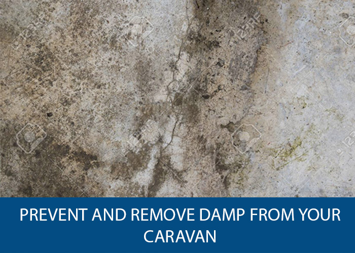 prevent and remove damp from your caravan