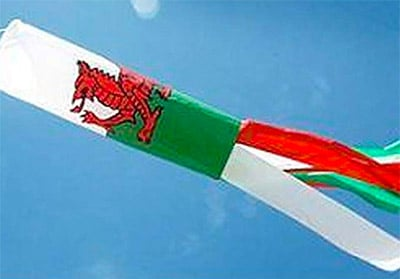Breeze Welsh Winsock for Telescopic Poles